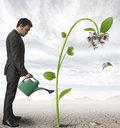 Per un balzo in avanti un aiuto alle PMI